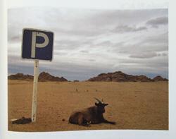 Photobook Printing Ex Why Zed